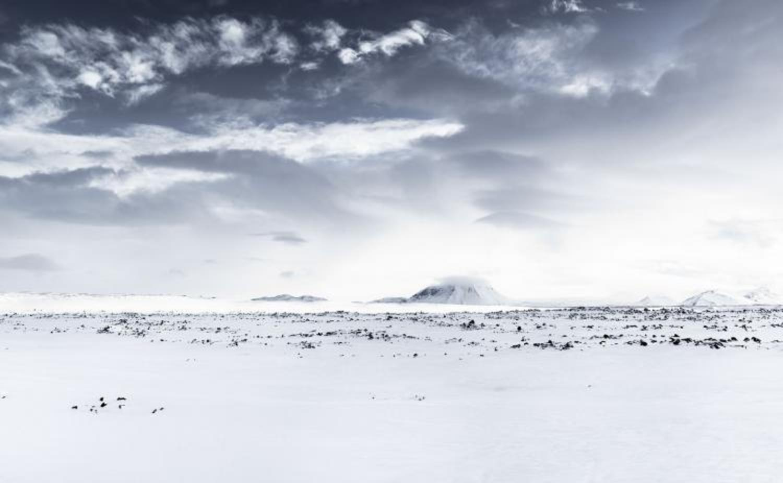 White Winds #5
