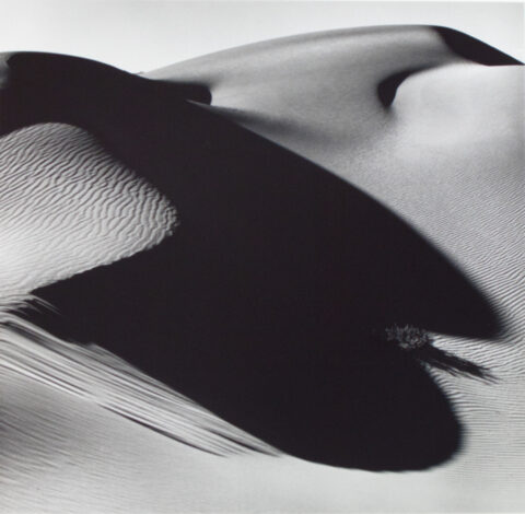Dune and Shadow, Death Valley