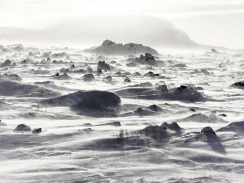 White Winds #3