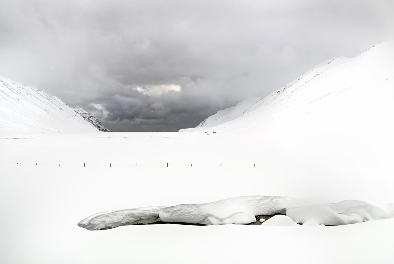 White Winds #22