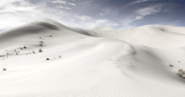 White Winds #26