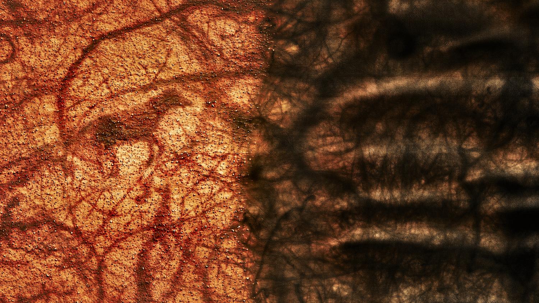 Sands of Mars #3